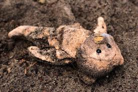 shallow grave teddy bear